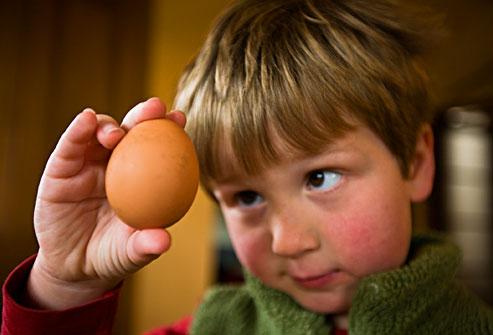 Παροιμίες με αυγά!